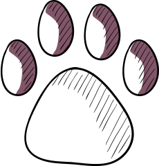 vets insurance illustration of paw print